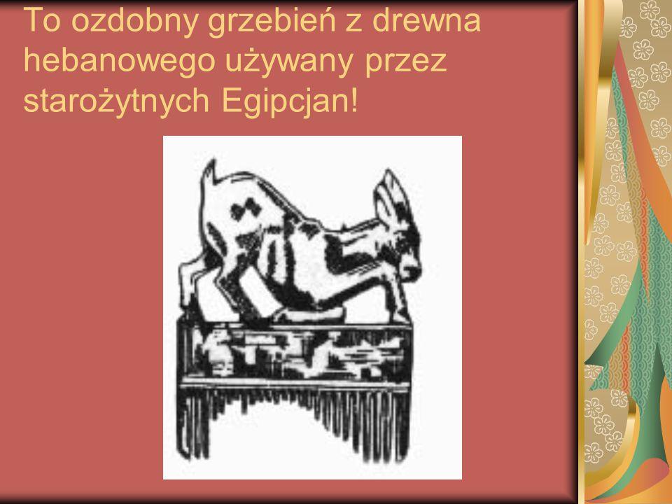 To ozdobny grzebień z drewna hebanowego używany przez starożytnych Egipcjan!