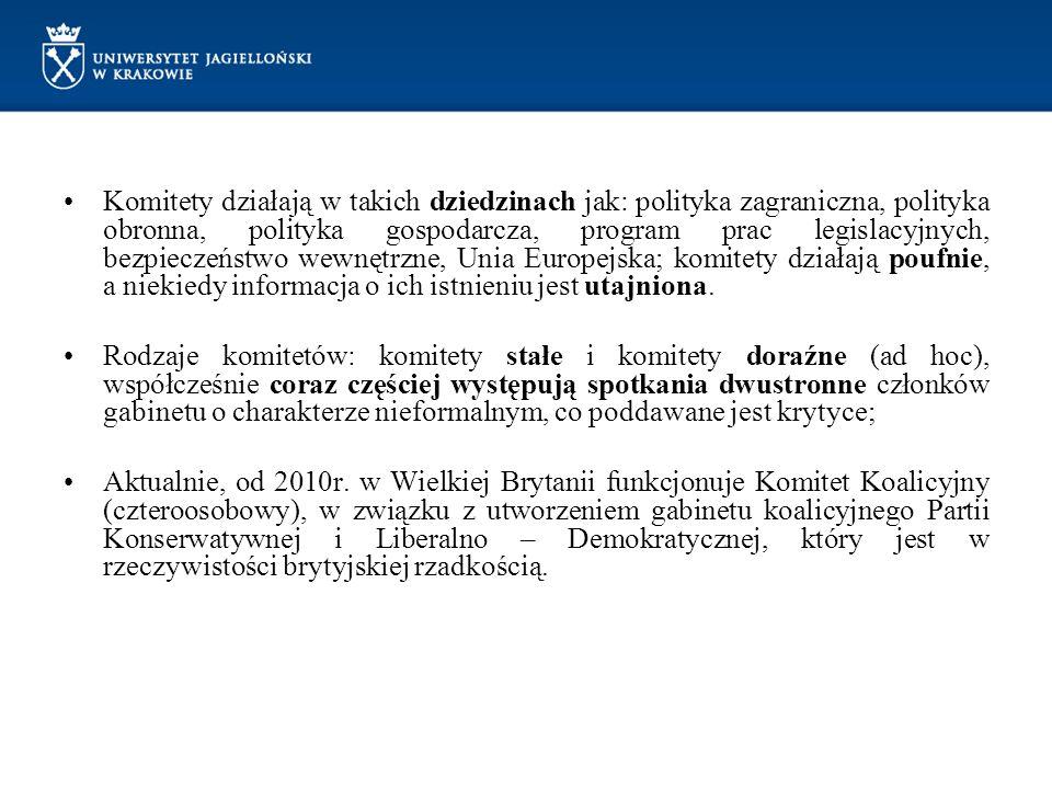 Komitety działają w takich dziedzinach jak: polityka zagraniczna, polityka obronna, polityka gospodarcza, program prac legislacyjnych, bezpieczeństwo wewnętrzne, Unia Europejska; komitety działają poufnie, a niekiedy informacja o ich istnieniu jest utajniona.