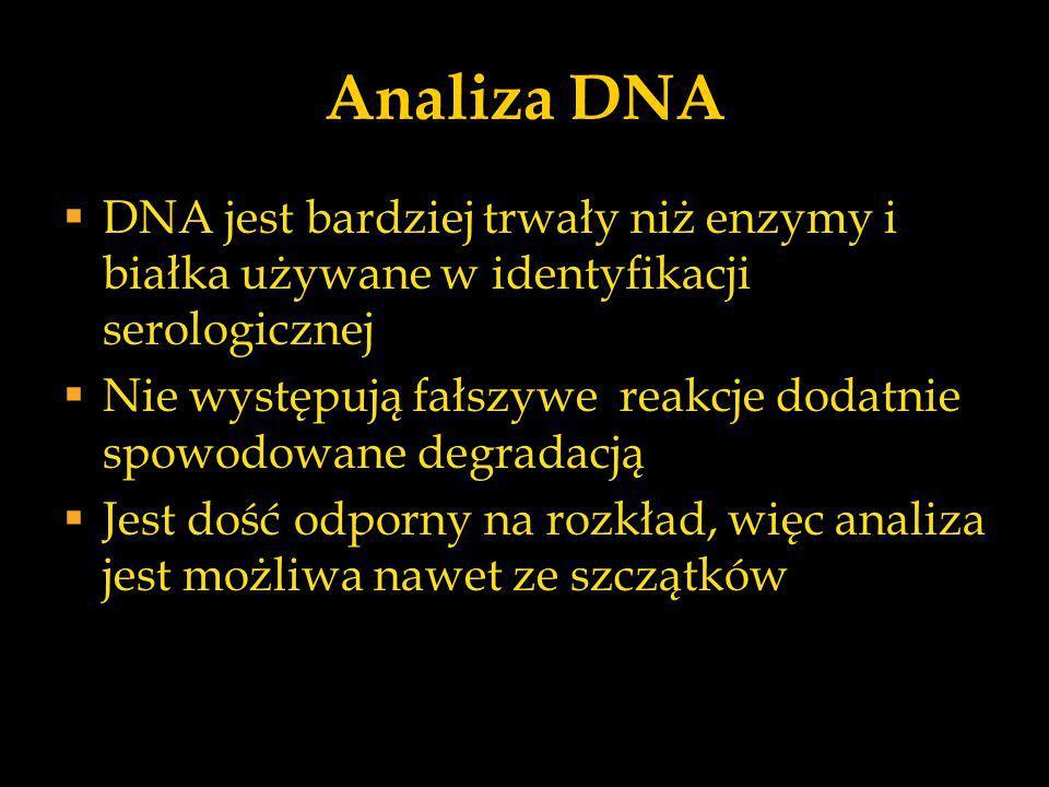 Analiza DNA DNA jest bardziej trwały niż enzymy i białka używane w identyfikacji serologicznej.