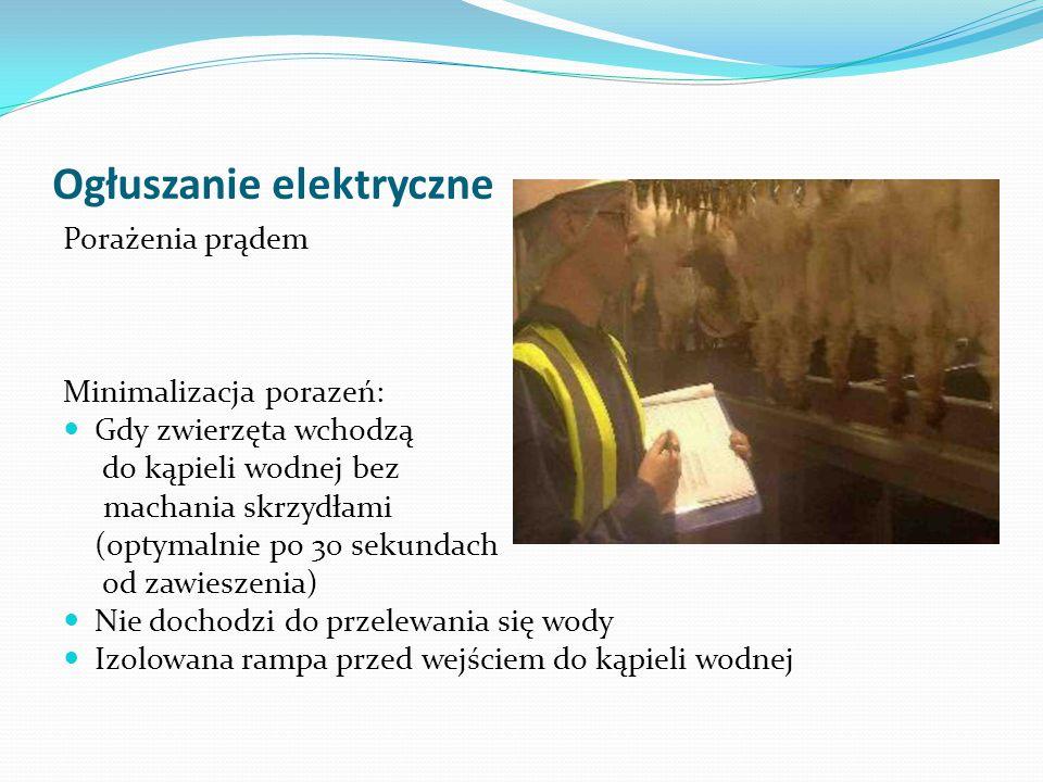 Ogłuszanie elektryczne