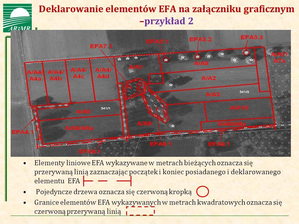 Deklarowanie elementów EFA na załączniku graficznym –przykład 2