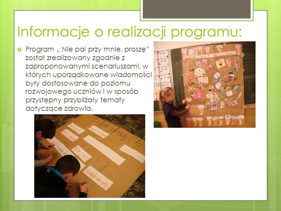 Informacje o realizacji programu: