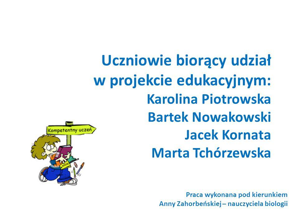 Uczniowie biorący udział w projekcie edukacyjnym: Karolina Piotrowska Bartek Nowakowski Jacek Kornata Marta Tchórzewska