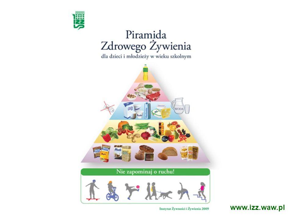 www.izz.waw.pl