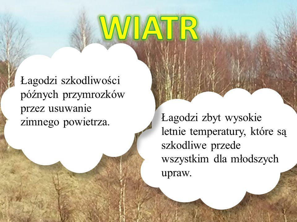 WIATR Łagodzi szkodliwości późnych przymrozków przez usuwanie zimnego powietrza.