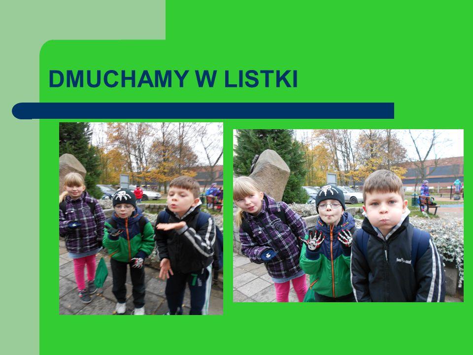 DMUCHAMY W LISTKI
