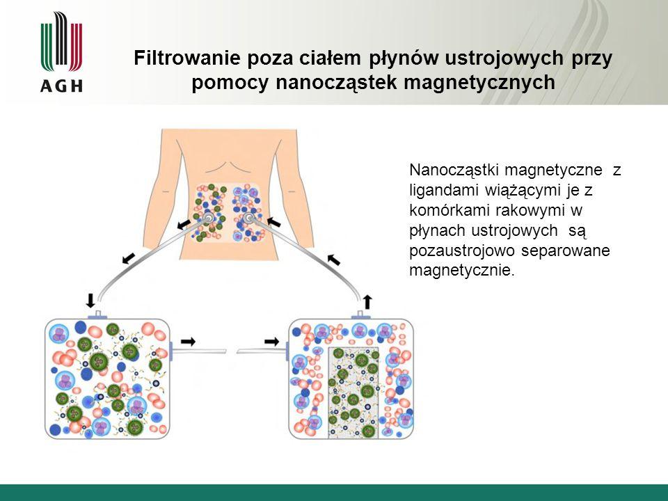 Filtrowanie poza ciałem płynów ustrojowych przy pomocy nanocząstek magnetycznych