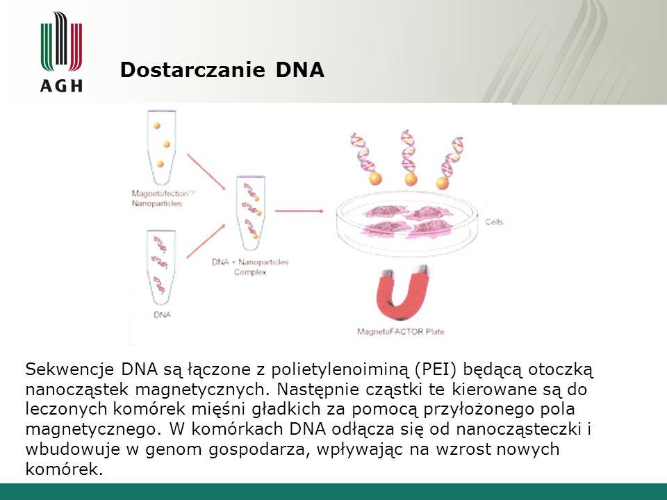 Dostarczanie DNA