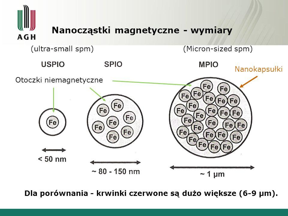 Nanocząstki magnetyczne - wymiary