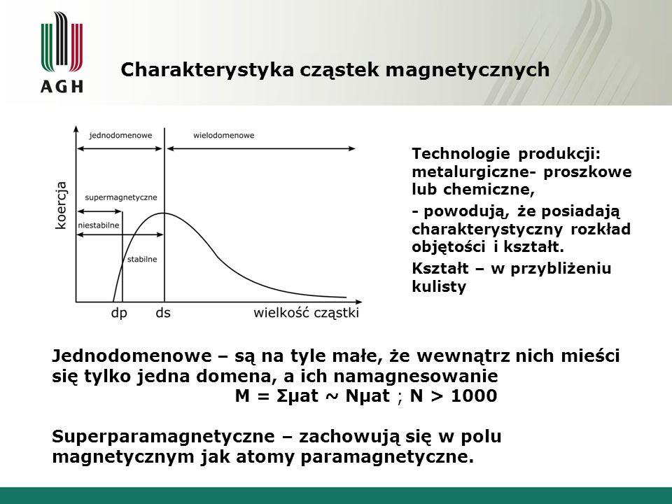 Charakterystyka cząstek magnetycznych