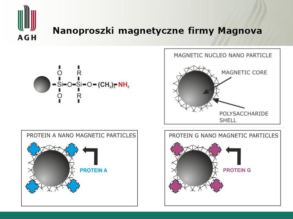 Nanoproszki magnetyczne firmy Magnova