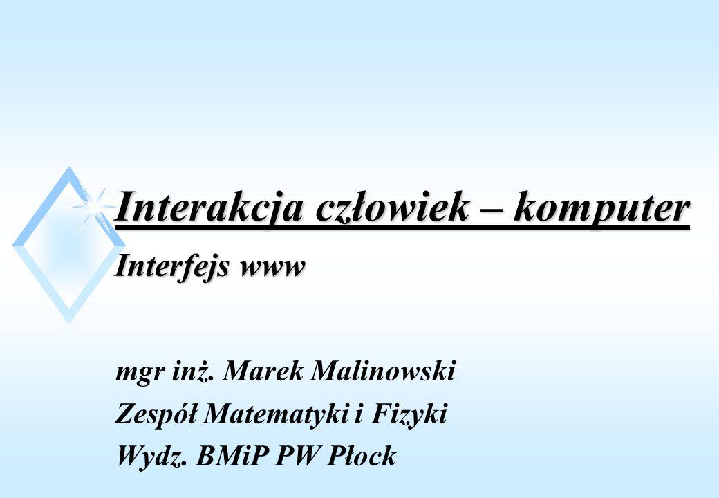 Interakcja człowiek – komputer Interfejs www