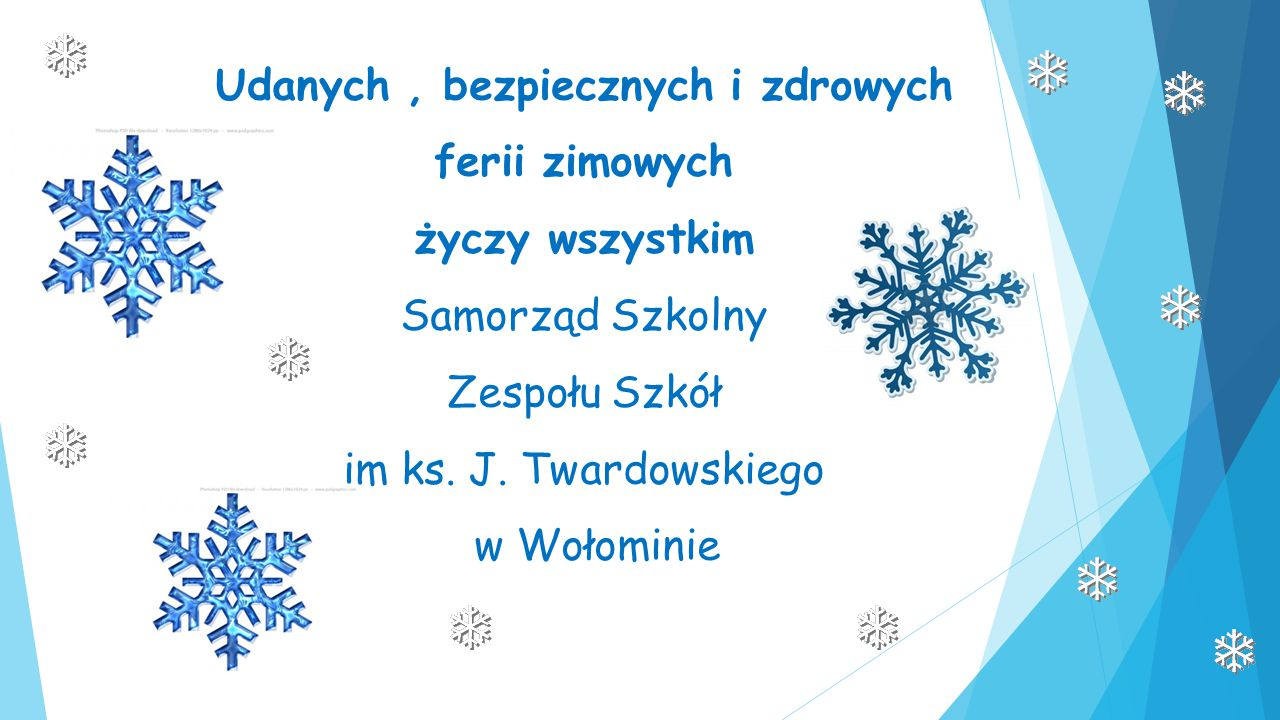 Udanych , bezpiecznych i zdrowych ferii zimowych życzy wszystkim Samorząd Szkolny Zespołu Szkół