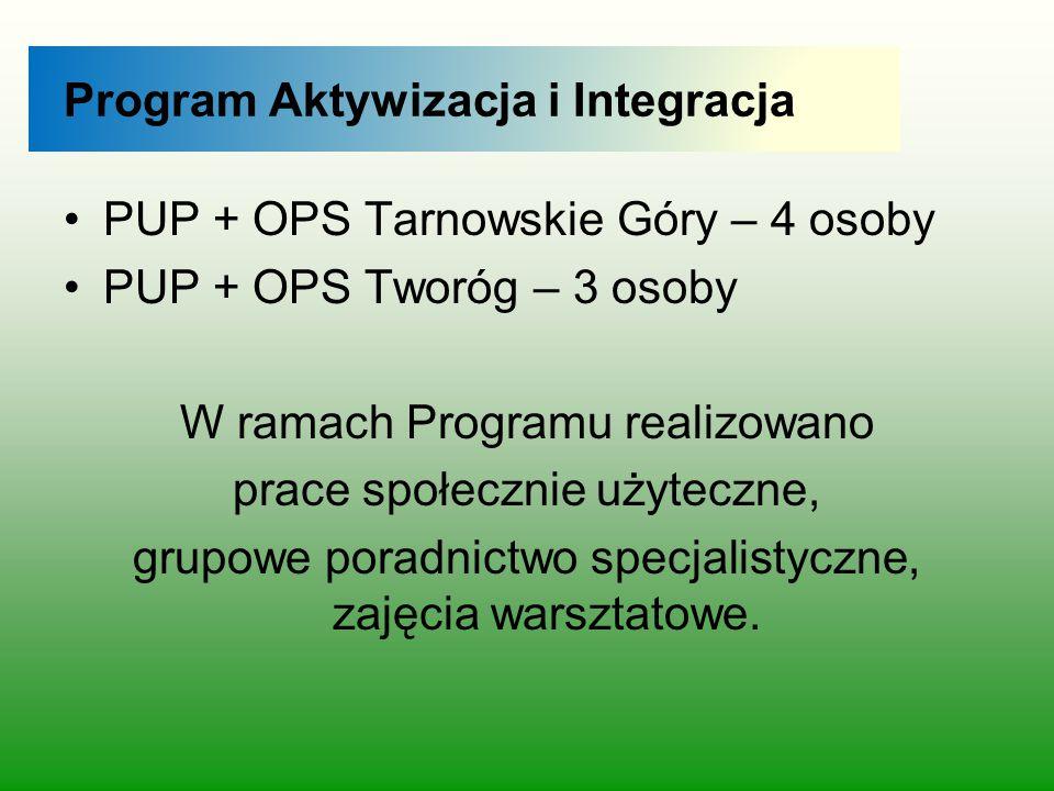 Program Aktywizacja i Integracja