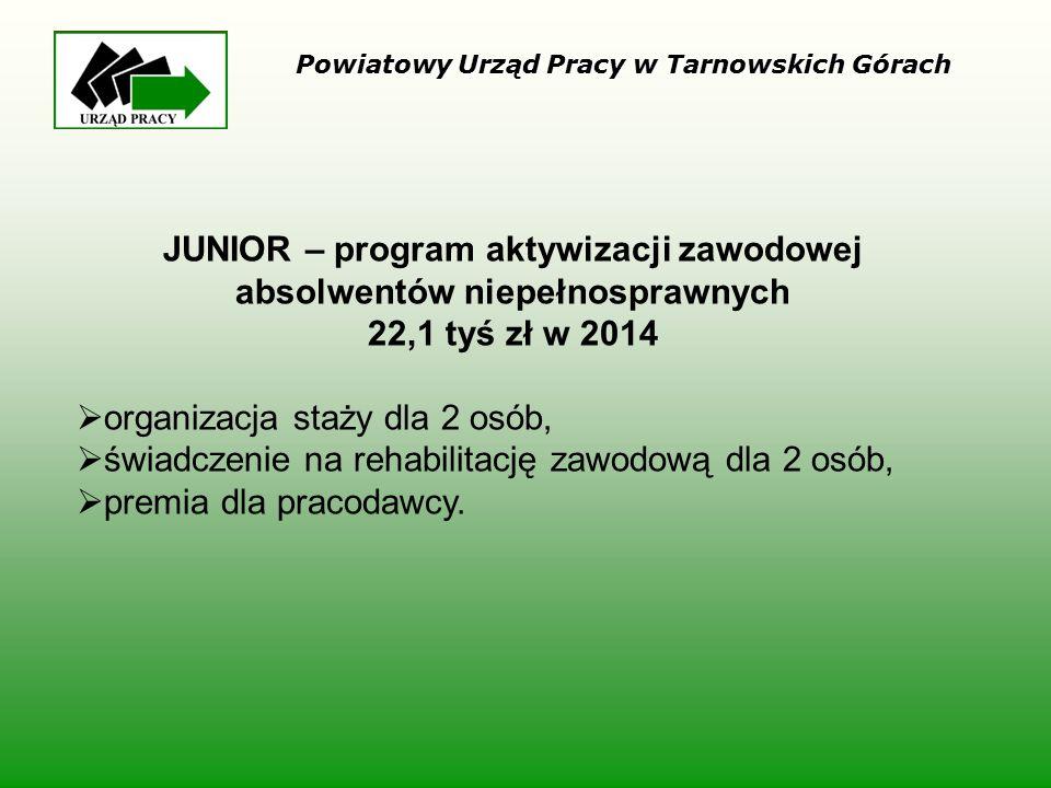JUNIOR – program aktywizacji zawodowej absolwentów niepełnosprawnych