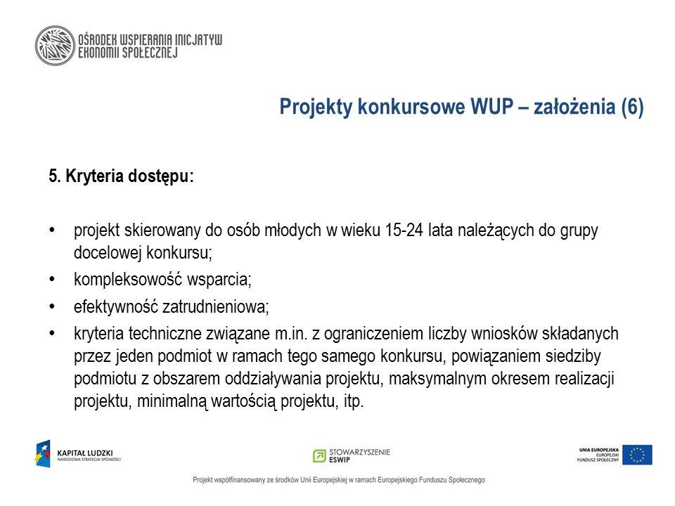 Projekty konkursowe WUP – założenia (6)