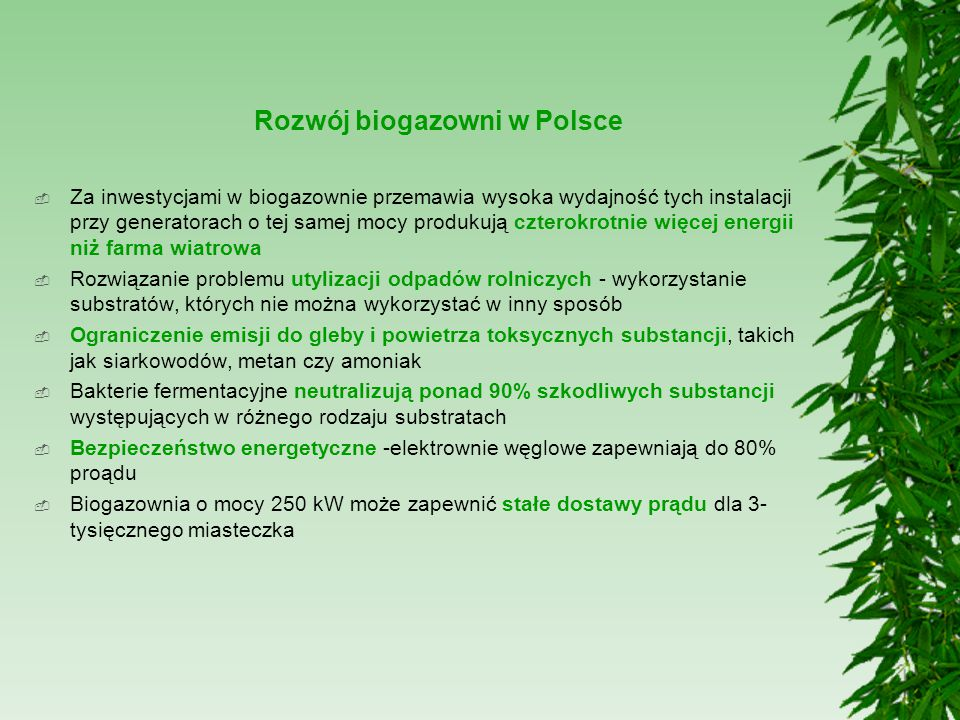 Rozwój biogazowni w Polsce