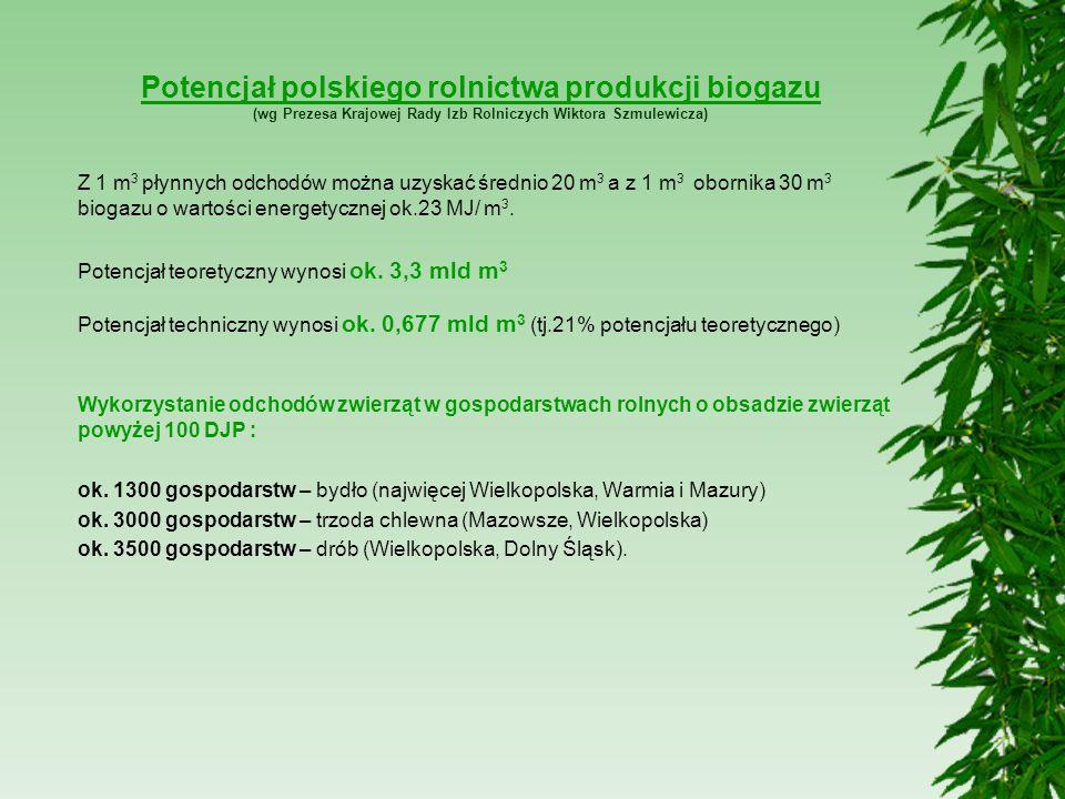 Potencjał polskiego rolnictwa produkcji biogazu (wg Prezesa Krajowej Rady Izb Rolniczych Wiktora Szmulewicza)