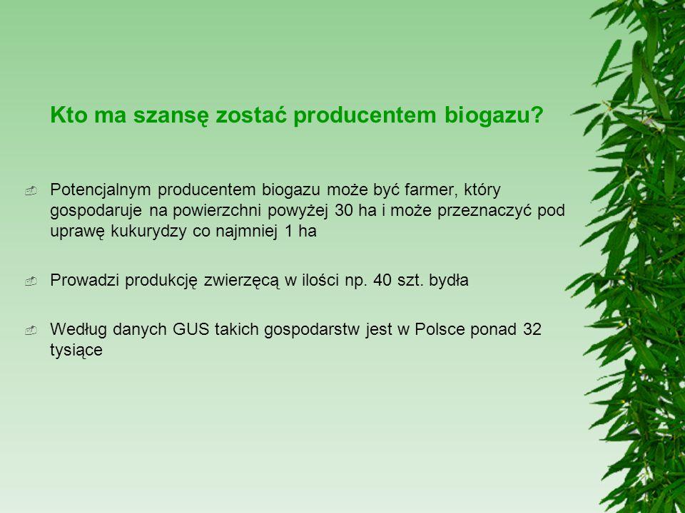 Kto ma szansę zostać producentem biogazu