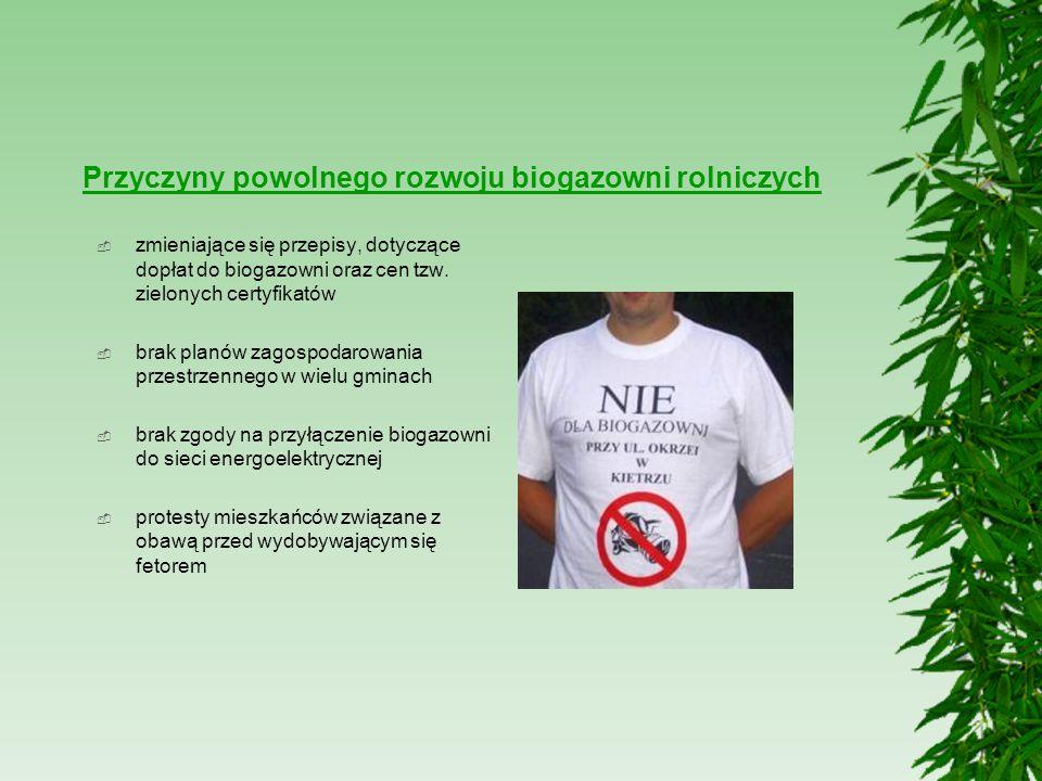 Przyczyny powolnego rozwoju biogazowni rolniczych