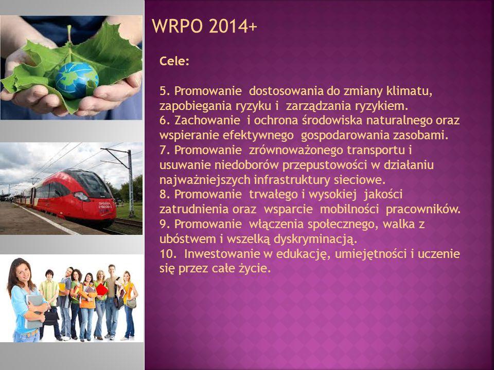 WRPO 2014+ Cele: 5. Promowanie dostosowania do zmiany klimatu, zapobiegania ryzyku i zarządzania ryzykiem.