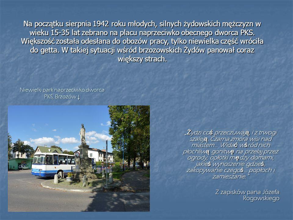 Niewielki park naprzeciwko dworca PKS, Brzozów ↓