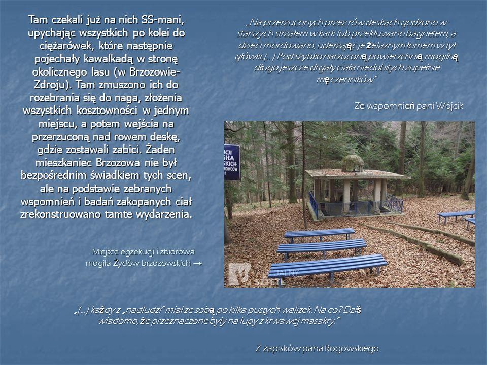 Miejsce egzekucji i zbiorowa mogiła Żydów brzozowskich →