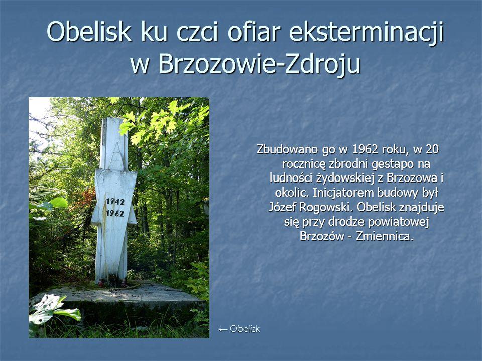 Obelisk ku czci ofiar eksterminacji w Brzozowie-Zdroju