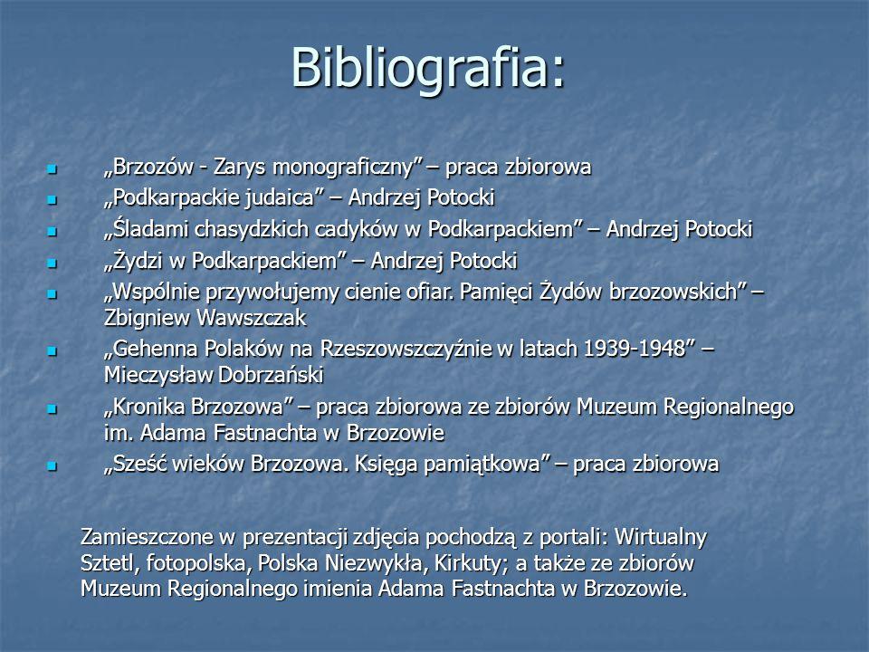 """Bibliografia: """"Brzozów - Zarys monograficzny – praca zbiorowa"""