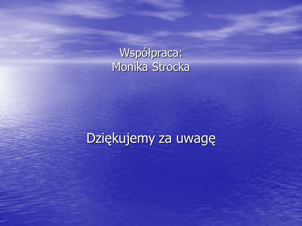 Współpraca: Monika Strocka