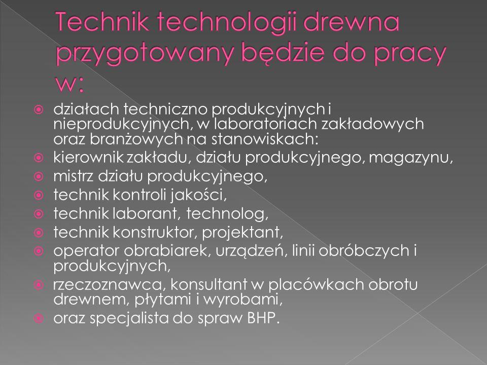 Technik technologii drewna przygotowany będzie do pracy w: