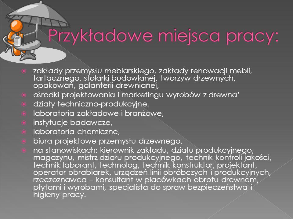 Przykładowe miejsca pracy: