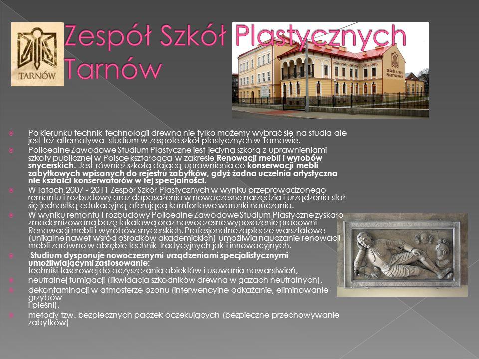 Zespół Szkół Plastycznych Tarnów