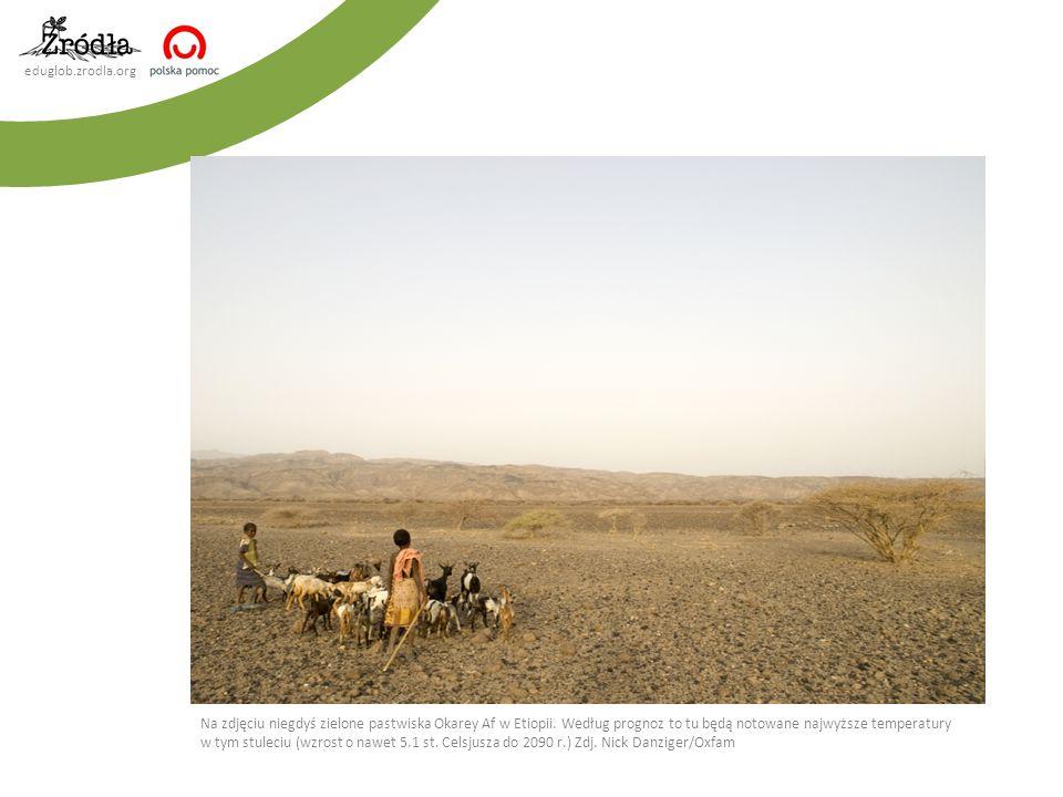 Mali pasterze kóz, Etiopia, 14 czerwiec 2008. Nick Danziger/Oxfam