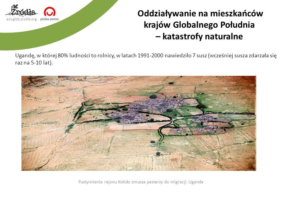 Pustynnienie rejonu Kotido zmusza pasterzy do migracji. Uganda