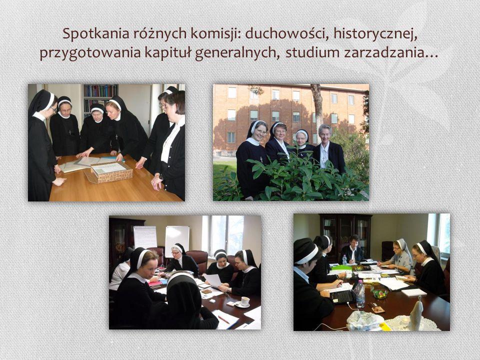 Spotkania różnych komisji: duchowości, historycznej, przygotowania kapituł generalnych, studium zarzadzania…