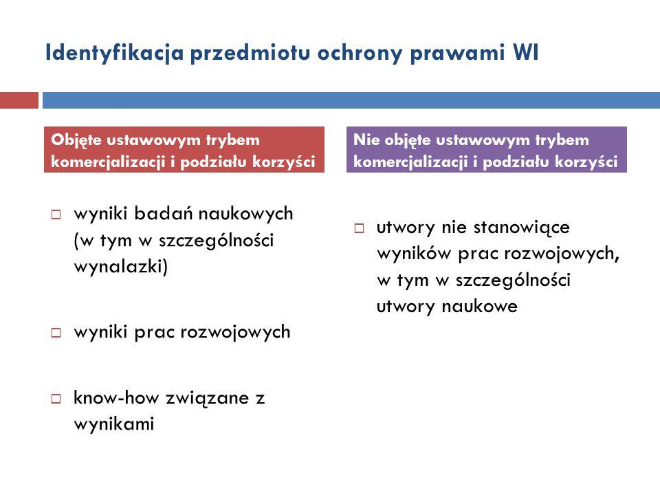 Identyfikacja przedmiotu ochrony prawami WI