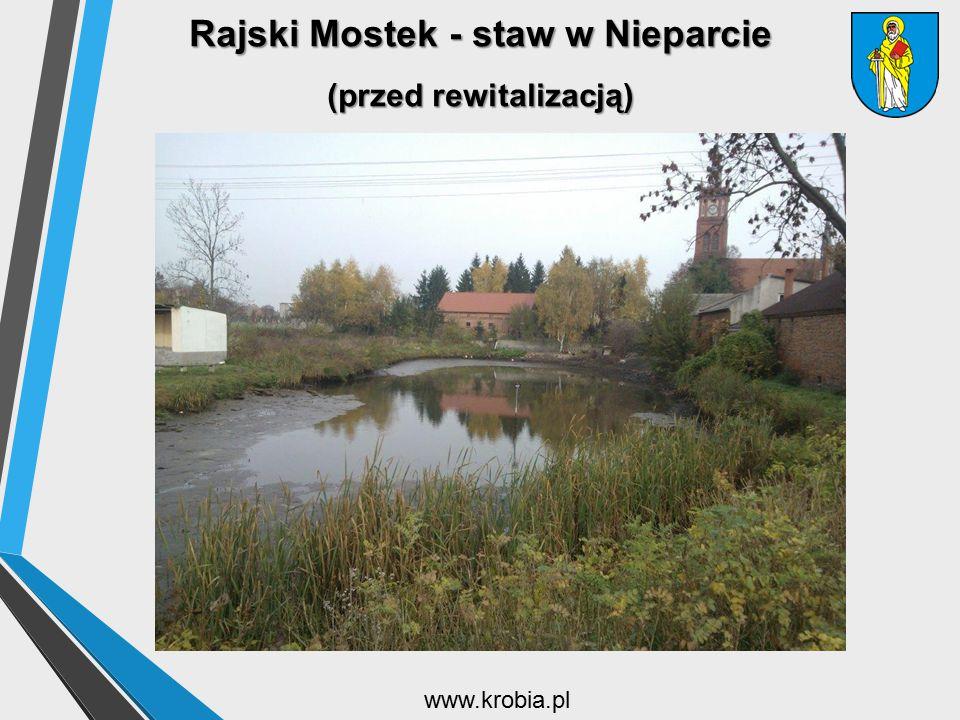 Rajski Mostek - staw w Nieparcie (przed rewitalizacją)
