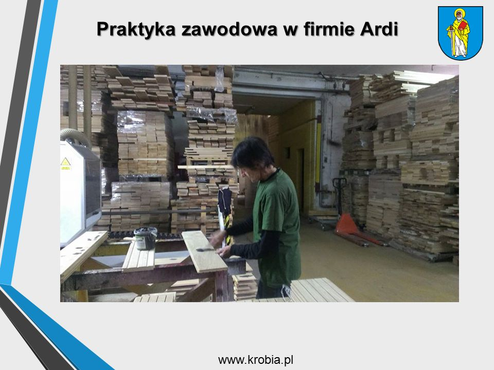 Praktyka zawodowa w firmie Ardi