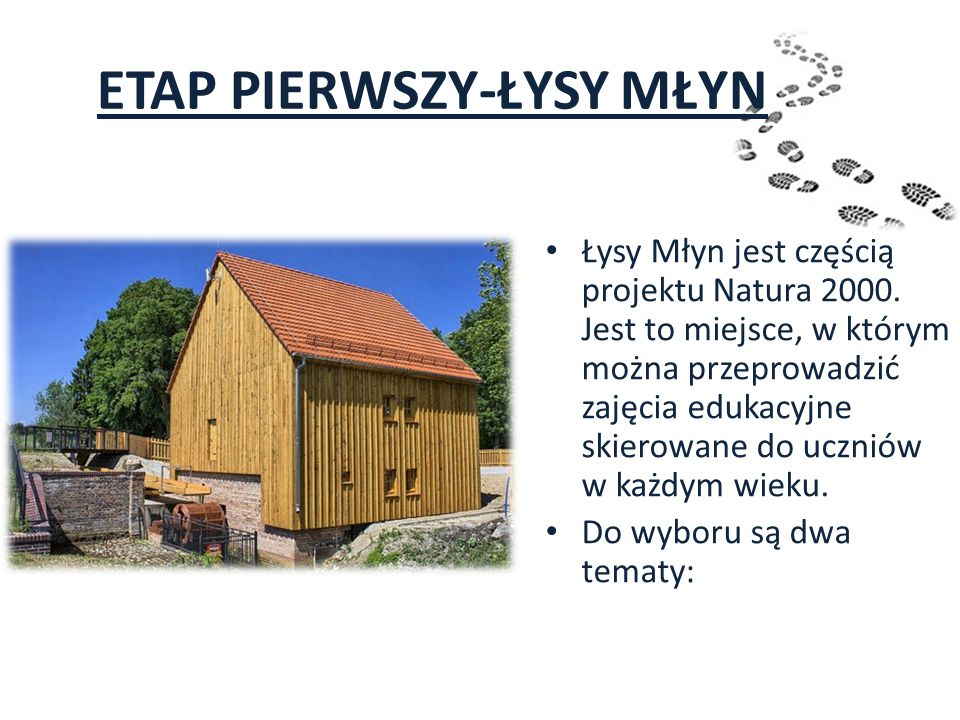 ETAP PIERWSZY-ŁYSY MŁYN