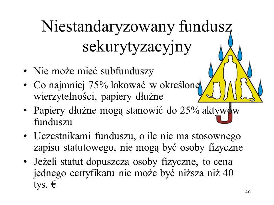 Niestandaryzowany fundusz sekurytyzacyjny