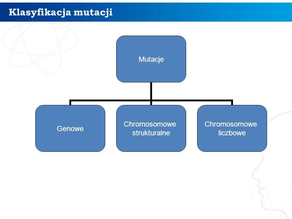 Klasyfikacja mutacji 4