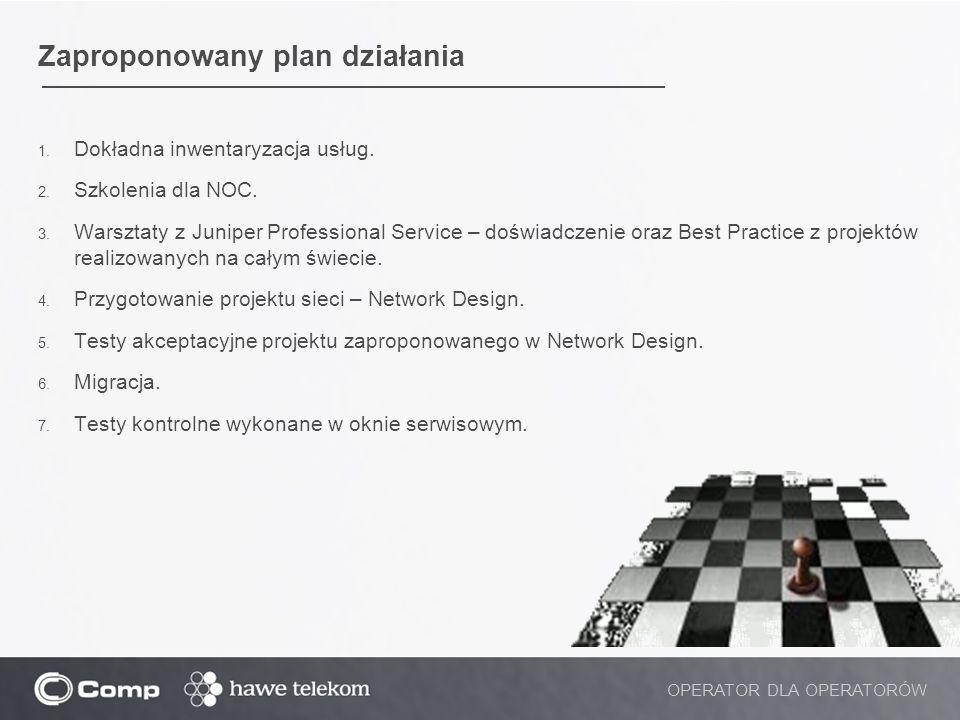 Zaproponowany plan działania