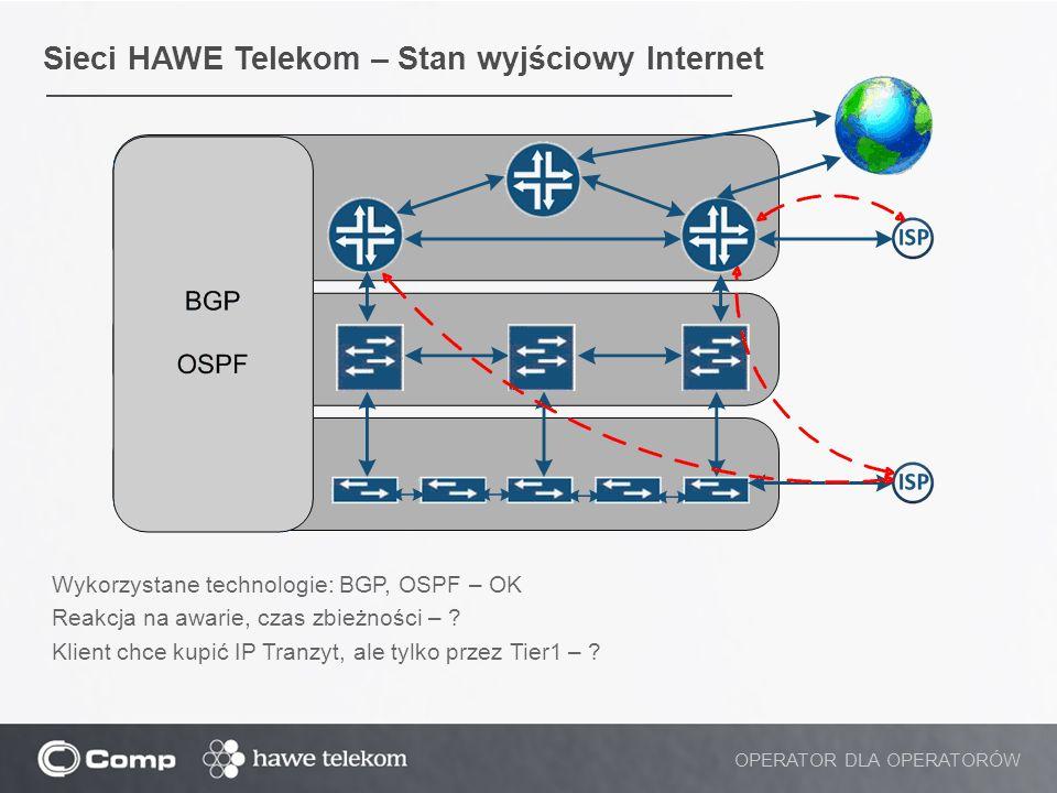Sieci HAWE Telekom – Stan wyjściowy Internet
