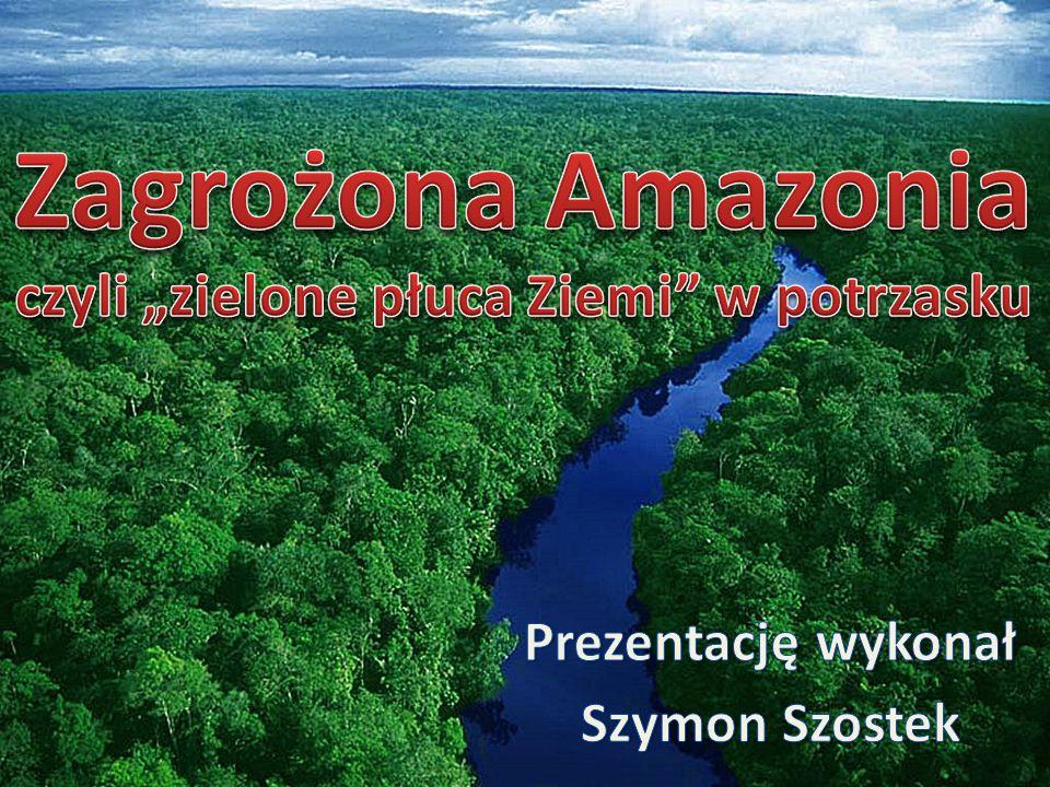 """Zagrożona Amazonia czyli """"zielone płuca Ziemi w potrzasku"""
