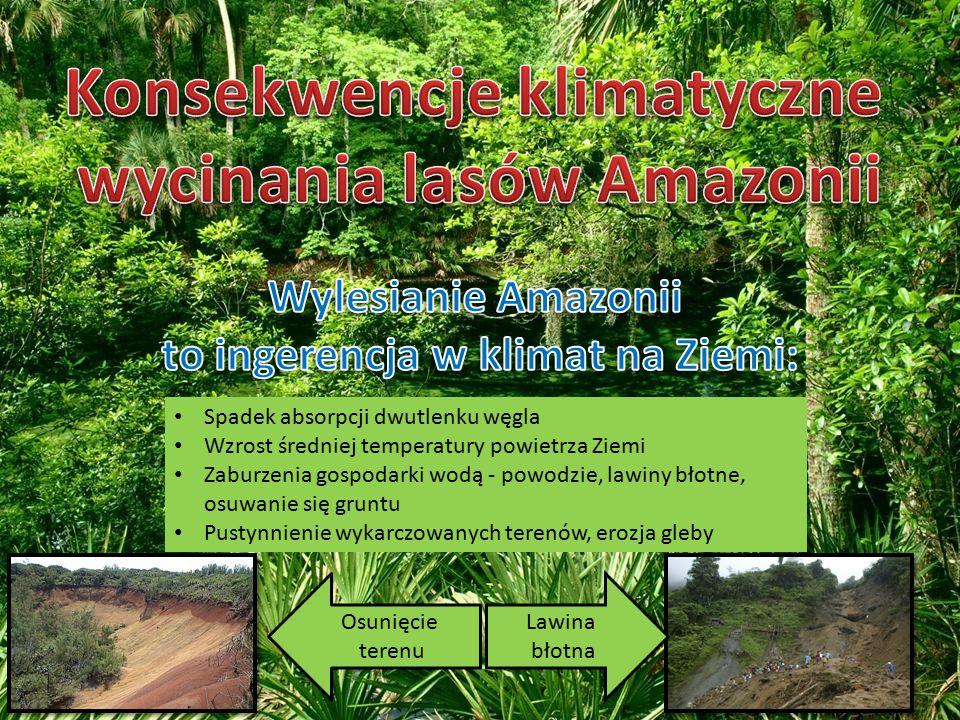 Konsekwencje klimatyczne wycinania lasów Amazonii