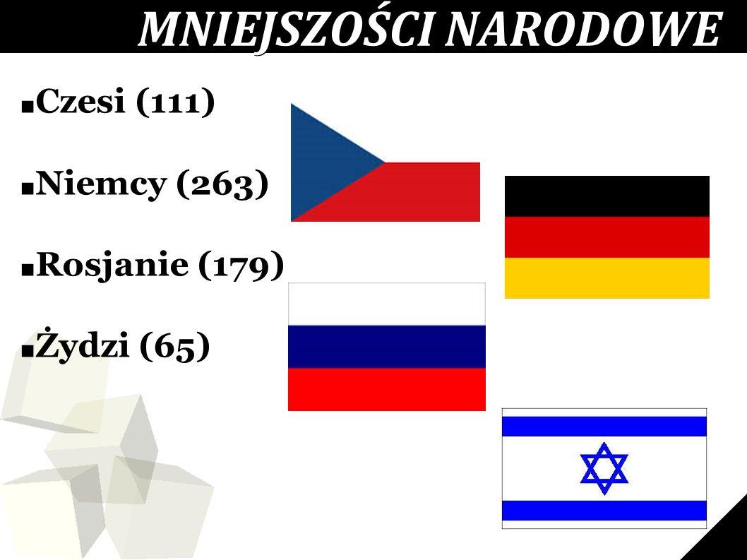 MNIEJSZOŚCI NARODOWE Czesi (111) Niemcy (263) Rosjanie (179)