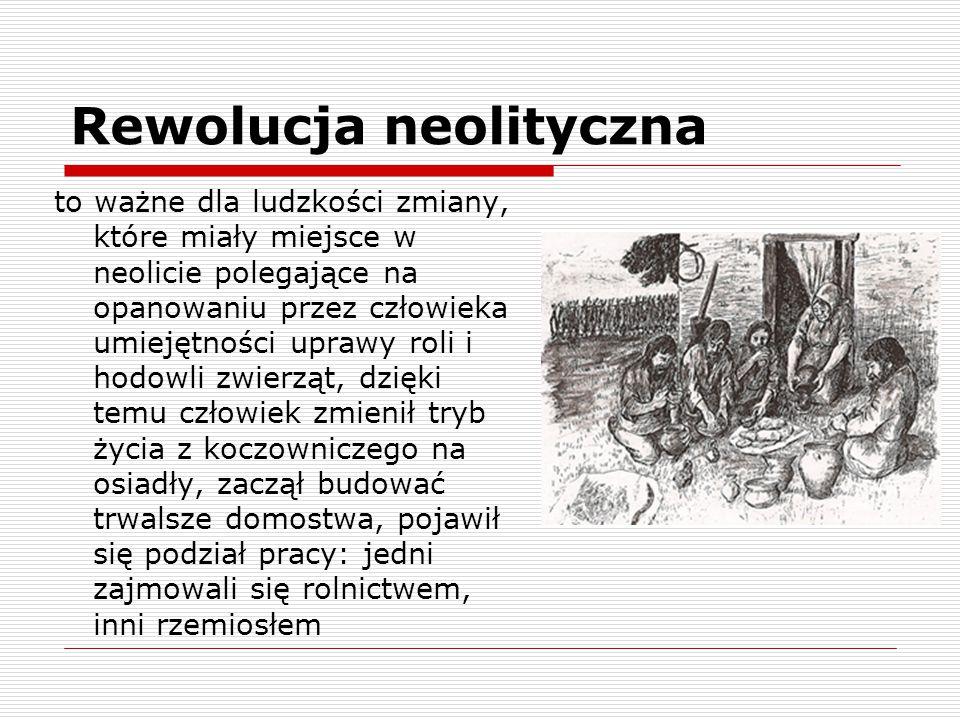 Rewolucja neolityczna