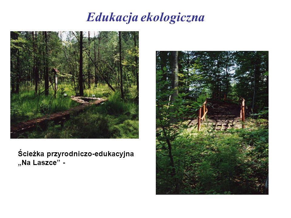 """Edukacja ekologiczna Ścieżka przyrodniczo-edukacyjna """"Na Laszce -"""