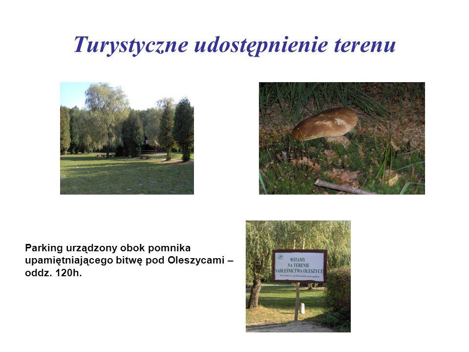 Turystyczne udostępnienie terenu